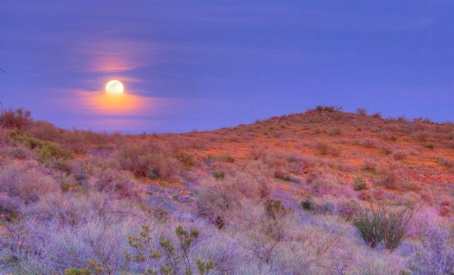 Moonrise over San Carlos Apache Reservation, Arizona.  Source: John Fowler/Flickr Creative Commons